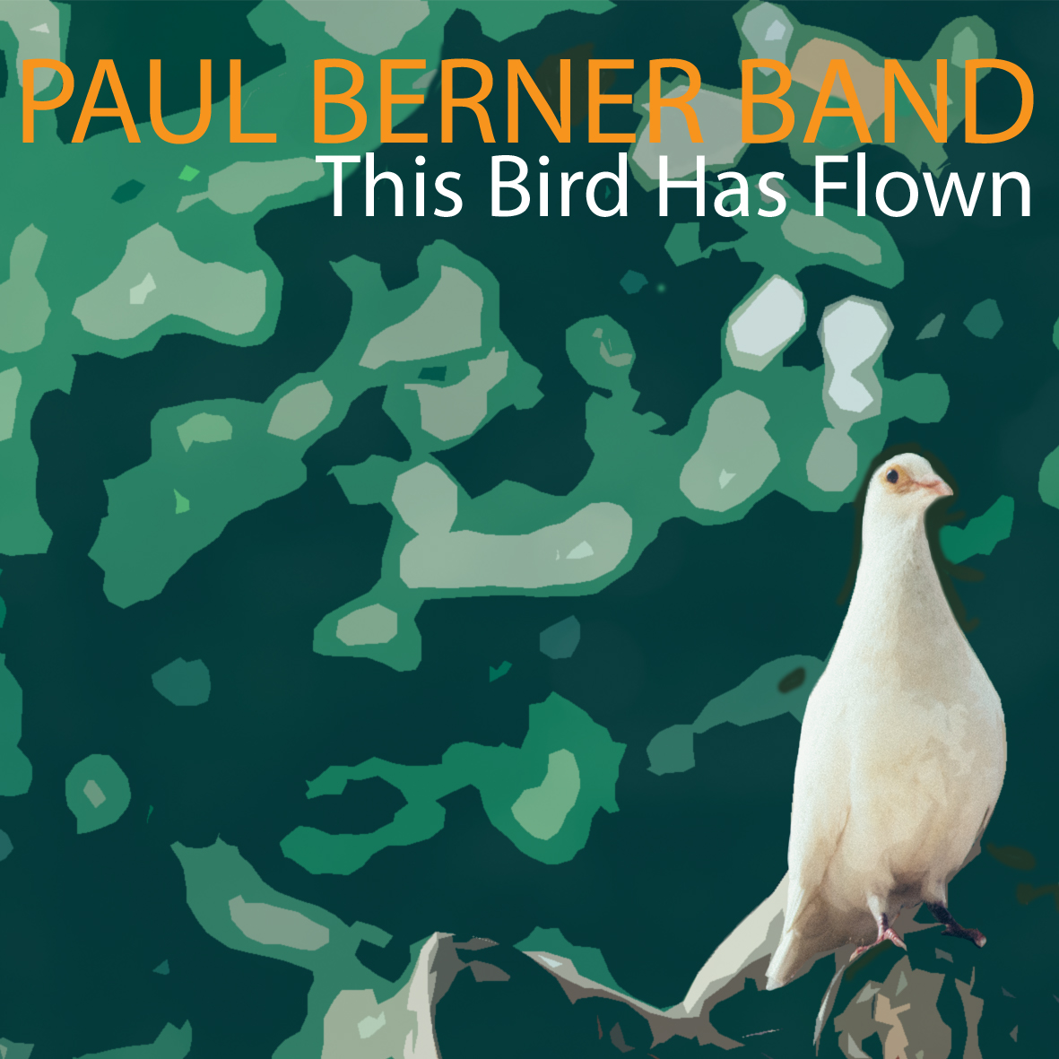 PAUL BERNER - This Bird has Flown cover