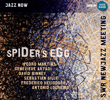 PEDRO MARTINS - Spider's Egg cover