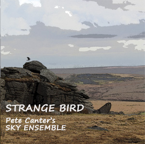 PETE CANTER - Strange Bird cover