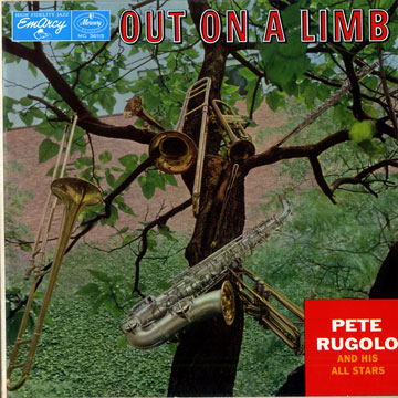 PETE RUGOLO - Out On A Limb cover