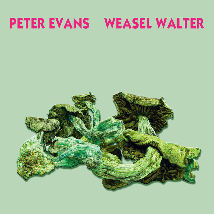 PETER EVANS - Peter Evans & Weasel Walter : Poisonous cover
