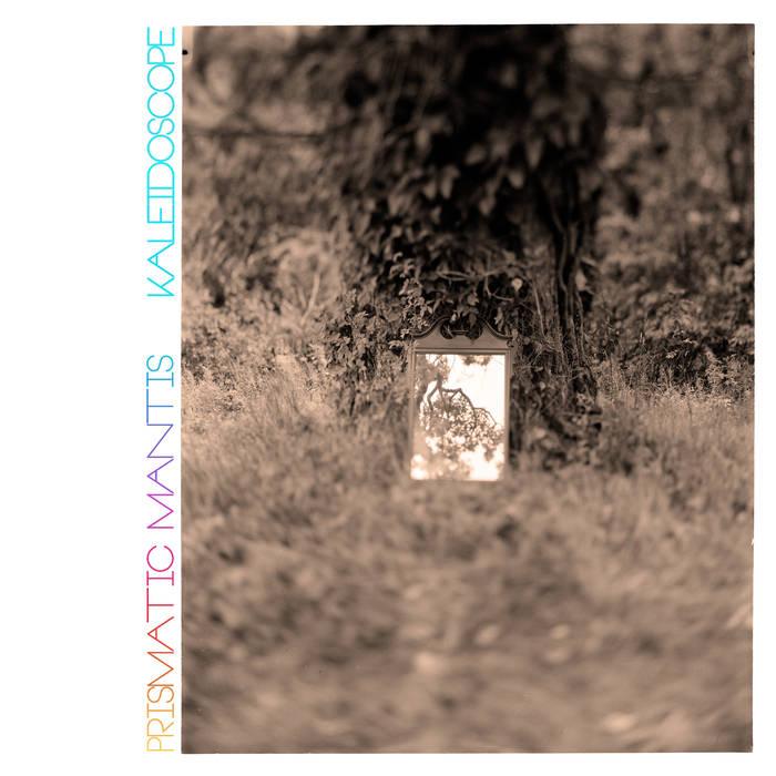 PRISMATIC MANTIS - Kaleidoscope cover