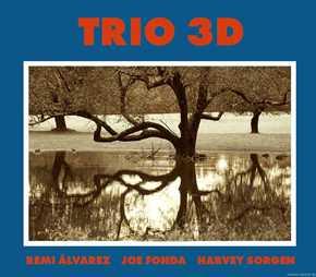 REMI ALVAREZ - Remi Alvarez/Joe Fonda/Harvey Sorgen: Trio 3D cover