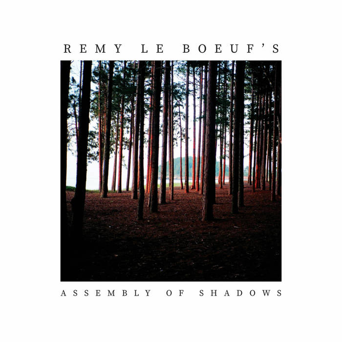 REMY LE BOEUF - Assembly of Shadows cover