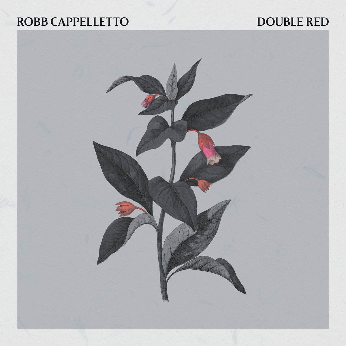 ROBB CAPPELLETTO - Double Red cover
