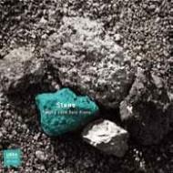 SATOKO FUJII - Stone cover