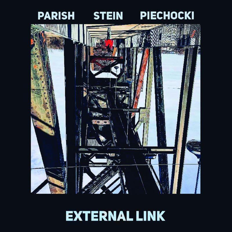 SHANE PARISH - Parish / Stein / Piechocki : External Link cover