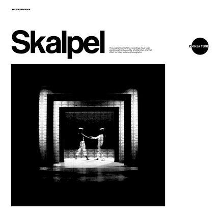 SKALPEL - Sculpture cover