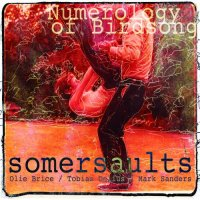SOMERSAULTS (OLIE BRICE / TOBIAS DELIUS / MARK SANDERS) - Numerology of Birdsong cover