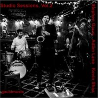 STEPHEN GAUCI - Stephen Gauci, Adam Lane, Kevin Shea : Studio Sessions, Vol. 2 cover