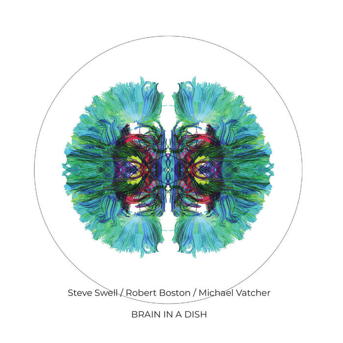 STEVE SWELL - Steve Swell / Robert Boston / Michael Vatcher : Brain in a Dish cover