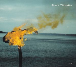 STEVE TIBBETTS - A Man About a Horse cover