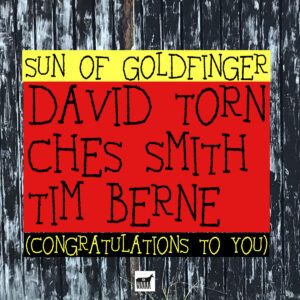 SUN OF GOLDFINGER - Congratulations to You cover