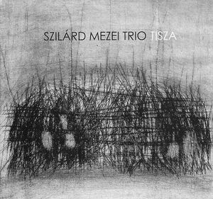 SZILÁRD MEZEI - Tisza cover