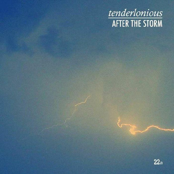 TENDERLONIOUS - After The Storm cover