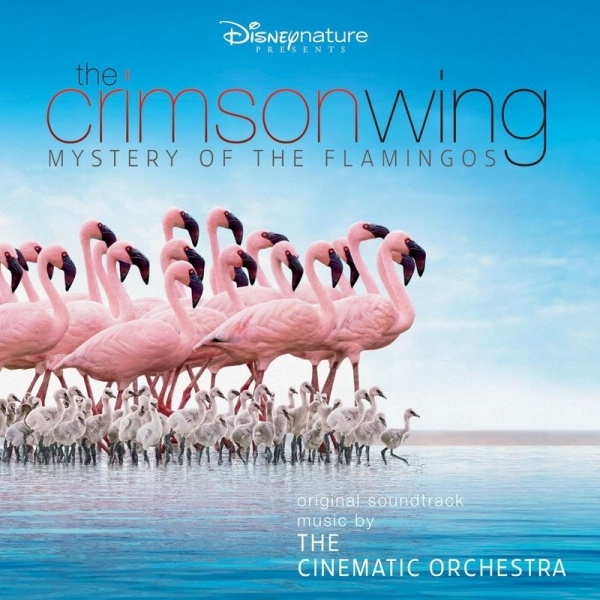 THE CINEMATIC ORCHESTRA - The Cinematic Orchestra & The London Metropolitan Orchestra ‎– Crimson Wing : Mystery Of The Flamingos cover