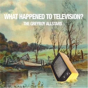 THE GREYBOY ALLSTARS - What Happened to Television cover