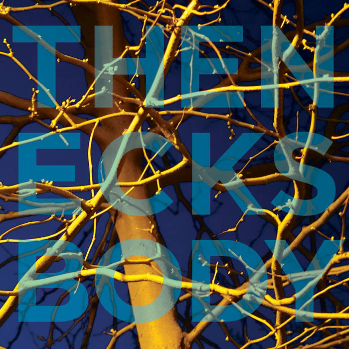 THE NECKS - Body cover
