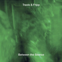 THEO TRAVIS - Travis & Fripp : Between The Silence cover