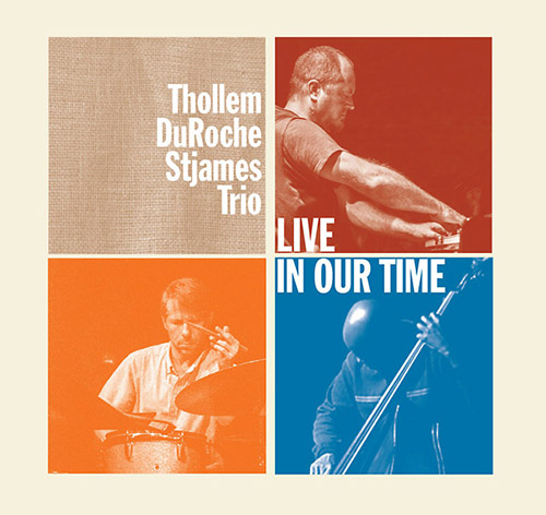 THOLLEM MCDONAS - Thollem / Duroche / Stjames Trio : Live in Our Time cover