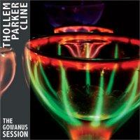 THOLLEM MCDONAS - Thollem / Parker / Cline : The Gowanus Session cover