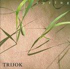 ACHIM KIRCHMAIR Spring (as Trijok) album cover