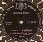 ADYLSON GODOY Terra Virgem / O Muro album cover