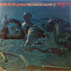 AIRTO MOREIRA Seeds On The Ground - The Natural Sounds Of Airto album cover