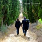 ALAN AND STACEY SCHULMAN A Love Like Ours album cover