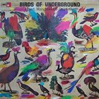 ALBERT MANGELSDORFF Birds Of Underground album cover