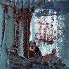 ALVIN CURRAN Alvin Curran | Cenk Ergun : The Art Of The Fluke album cover
