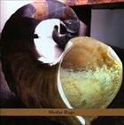 ALVIN CURRAN Shofar Rags album cover