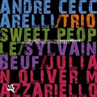 ANDRÉ CECCARELLI Sweet People album cover