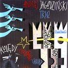 ANDRZEJ JAGODZIŃSKI Andrzej Jagodziński Trio : Kolędy Christmas Carols (aka Christmas) album cover