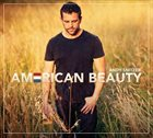 ANDY SNITZER American Beauty album cover