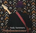 ANDY SUMMERS Triboluminescence album cover