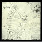 ANNETTE PEACOCK Sky Skating album cover