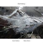 ARAM SHELTON Aram Shelton & Håkon Berre : Dormancy album cover