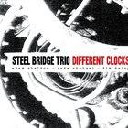 ARAM SHELTON Steel Bridge Trio : Different Clocks album cover