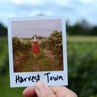 ASHLEY DANEMAN Harvest Town album cover