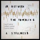ASSIF TSAHAR Assif Tsahar, William Parker, Hamid Drake : In Between the Tumbling a Stillness album cover