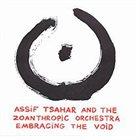 ASSIF TSAHAR Embracing The Void album cover