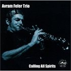 AVRAM FEFER Avram Fefer Trio ‎: Calling All Spirits album cover
