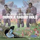 AYN INSERTO JAZZ ORCHESTRA Down a Rabbit Hole album cover