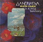 BEAVER & KRAUSE In A Wild Sanctuary / Gandharva album cover