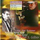 BÉLA SZAKCSI LAKATOS Long, Hot Summer -  Songs of Pál S. Gábor album cover