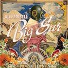 BILL FRISELL Big Sur Album Cover