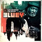 BLUEY Life Between The Notes album cover