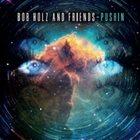BOB HOLZ Pushin album cover