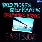 BOB MOSES Drumming Birds album cover